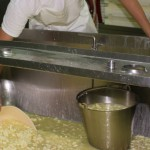 Maleny Cheese - Cheese Making